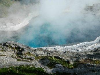Thermal Pool in Te Puia