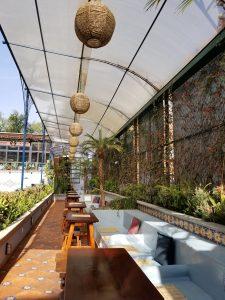 rooftop hotel parque mexico