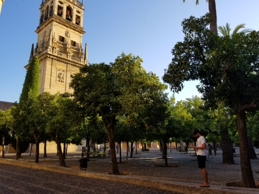 Inside the Mezquita grounds